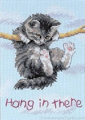 Hang in there- poes aan tak