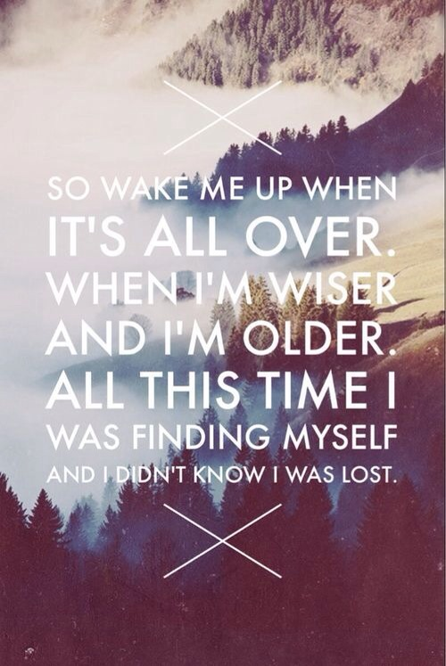 quote Wake me up when it's over