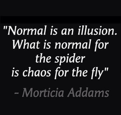 quote normal is an illusion